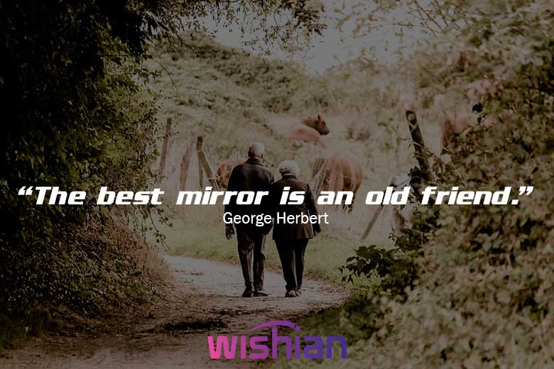 Sayings Friendship Quotes