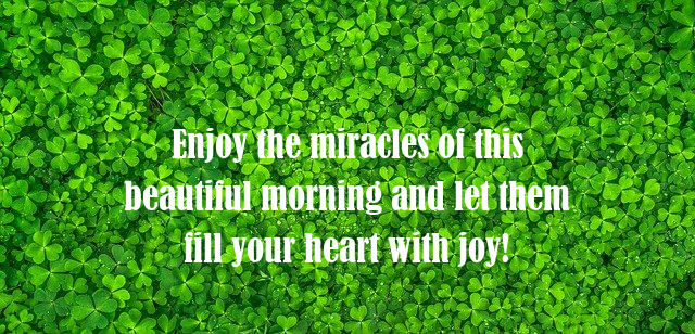 Good Morning Friends Quote HD Pictures