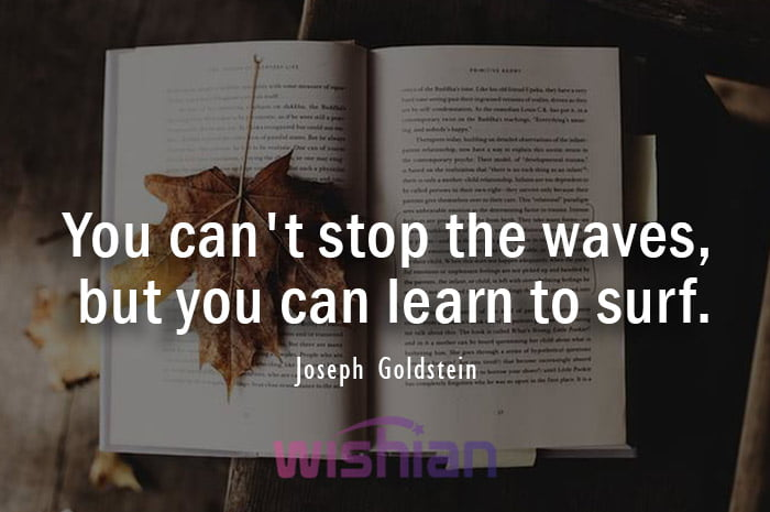 Acceptance Quote by Joseph Goldstein