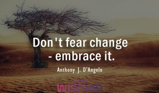 Accepting Change Quote by Anthony J. DAngelo
