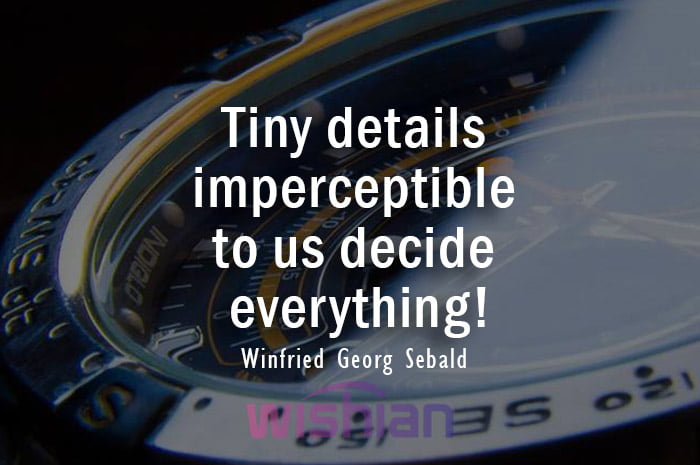 Accuracy Quote by Winfried Georg Sebald