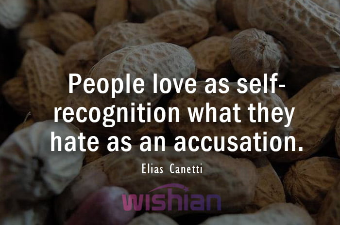 Accusation Quotes by Elias Canetti