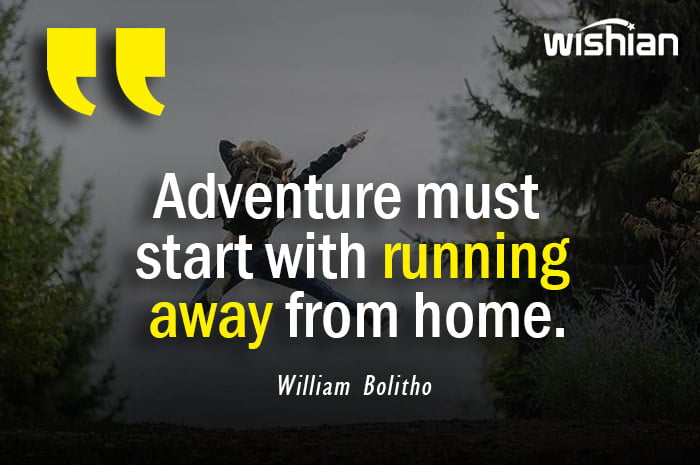 Adventure Quotes by William Bolitho
