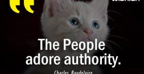 Charles Baudelaire Quotes about People adore authority