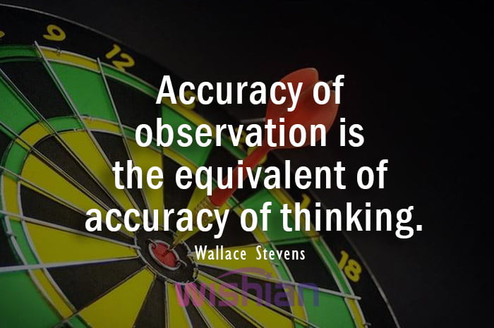 Quote About Accuracy by Wallace Stevens