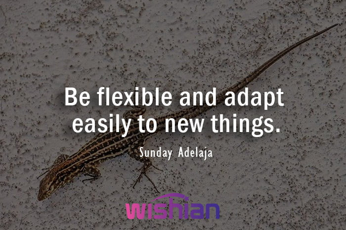 Quotes about Adjustment by Sunday Adelaja to inspire adaptability