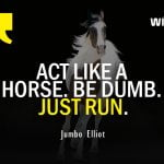Most Inspirational Running Quotes by Jumbo Elliot on act like a horse just run