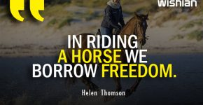 Short Horse riding Quotes on Freedom by Helen Thomson