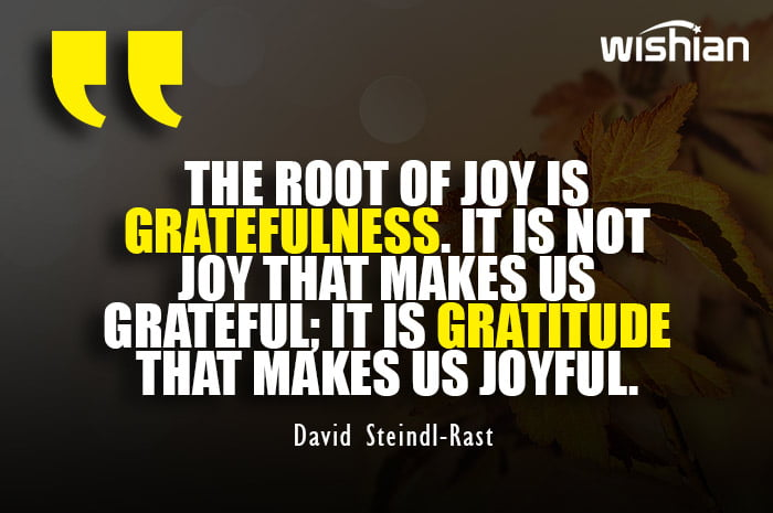 David Steindl Rast Quotes about Gratefulness and gratitude to share on Happy thanksgiving day