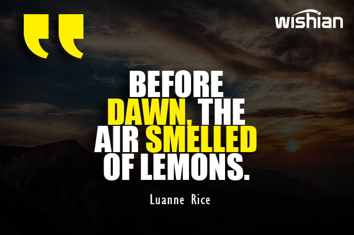 Luanne Rice Quotes about Dawn and air