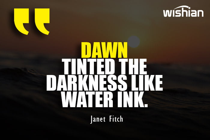 Motivational Dawn Quotes by Janet Fitch about darkness in life