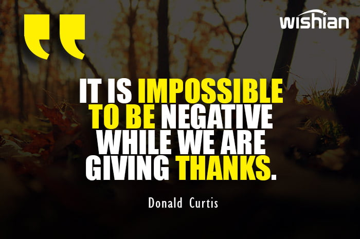 Positive Thanksgiving Quotes by Donald Curtis