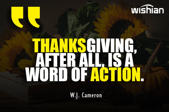 Thanksgiving is a word of action Quotes by W.J. Cameron